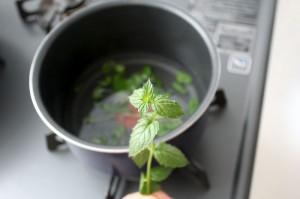 砂糖とミントでシロップを作る