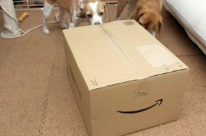 また大きな箱