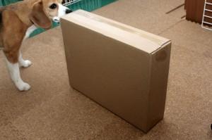 また箱が届いた