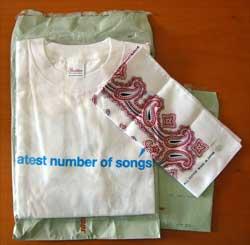 Tシャツとバンダナ
